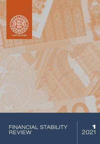 Publikatsiooni Financial Stability Review 1/2021 kaanepilt